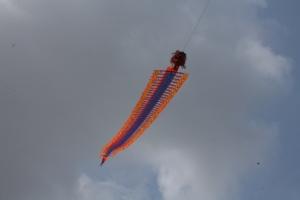 Seekor 'Naga' Terbang dengan Melambai-lambai dilangit Engku Putri